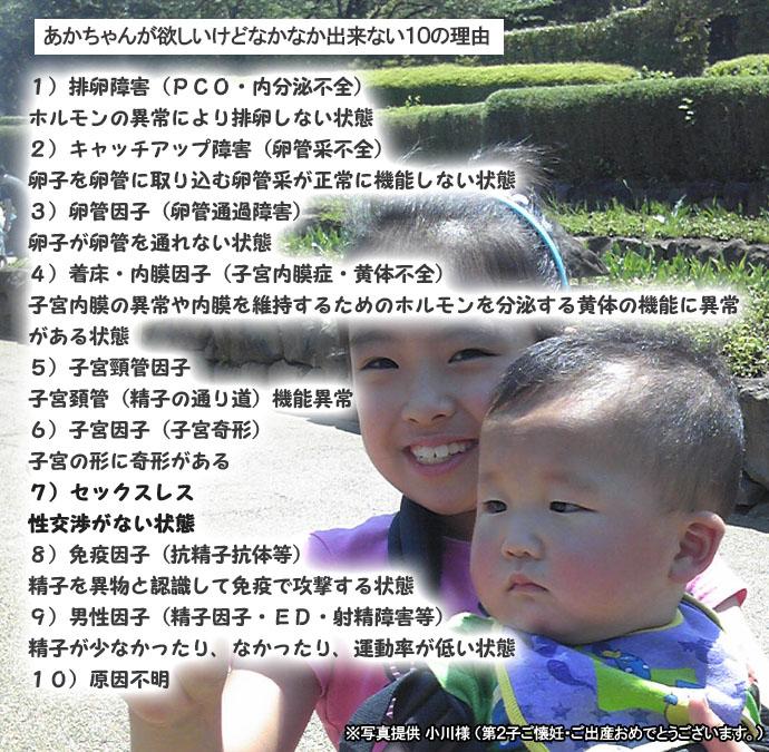 ふかふかアイビス-04のコピー.jpg