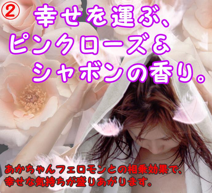ふかふかアイビス-08のコピー.jpg