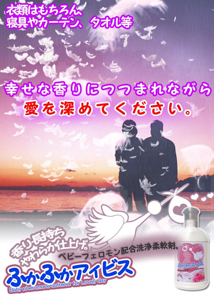 11-ふかふかアイビス.jpg