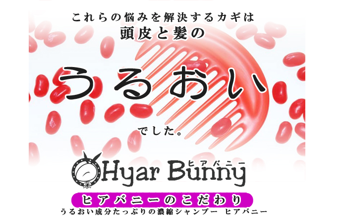 ヒアバニー6特徴1のコピー.jpg