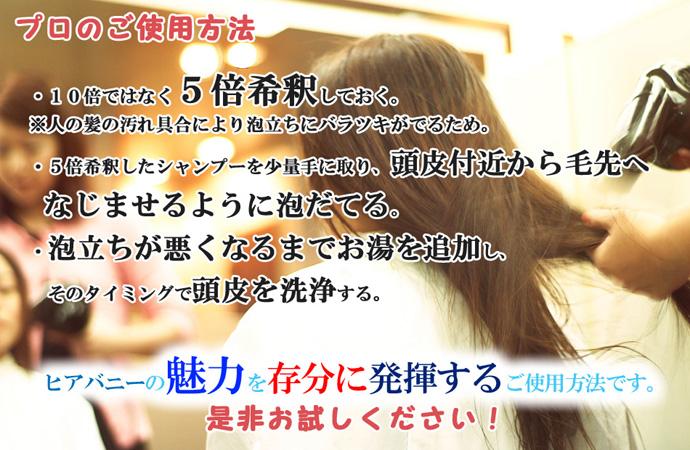 ヒアバニーA2使用方法プロ編のコピー.jpg