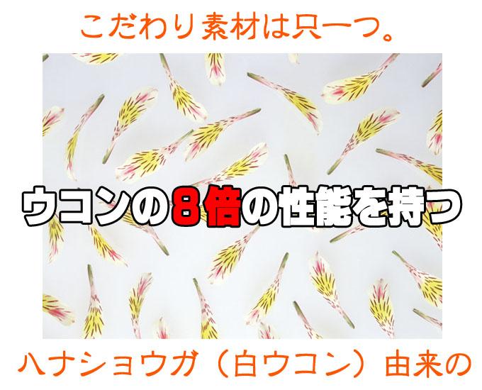 遠藤康平-10のコピー.jpg