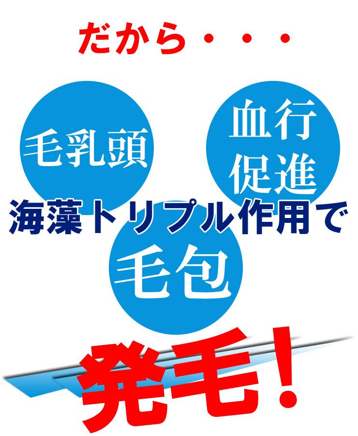 イオンソレイユ トリプル作用のコピー.jpg