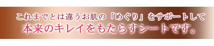 solex-011のコピー.jpg