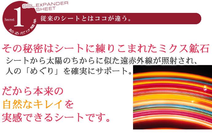 solex-013のコピー.jpg