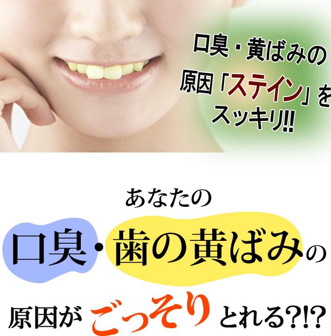 カプリ2のコピー.jpg