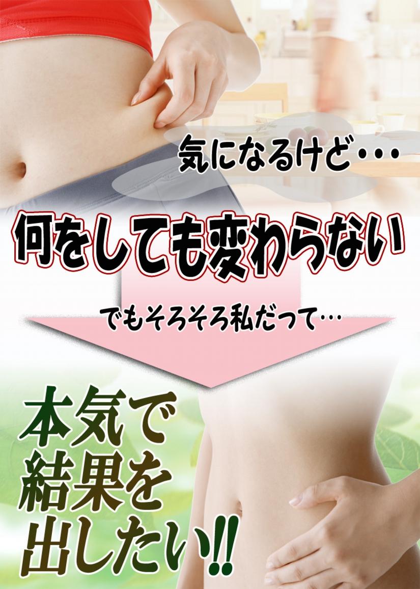 トサマル5のコピー.jpg