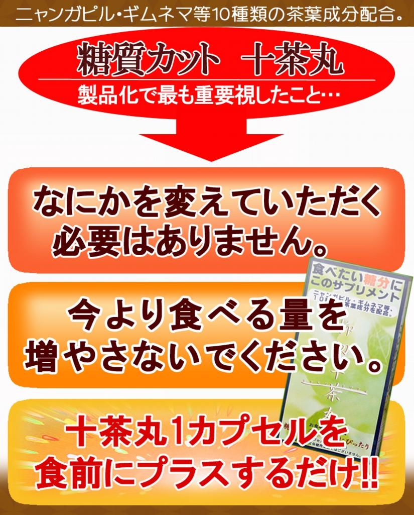 トサマル8のコピー.jpg