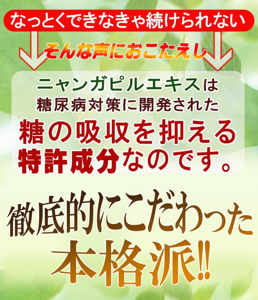トサマル9のコピー.jpg
