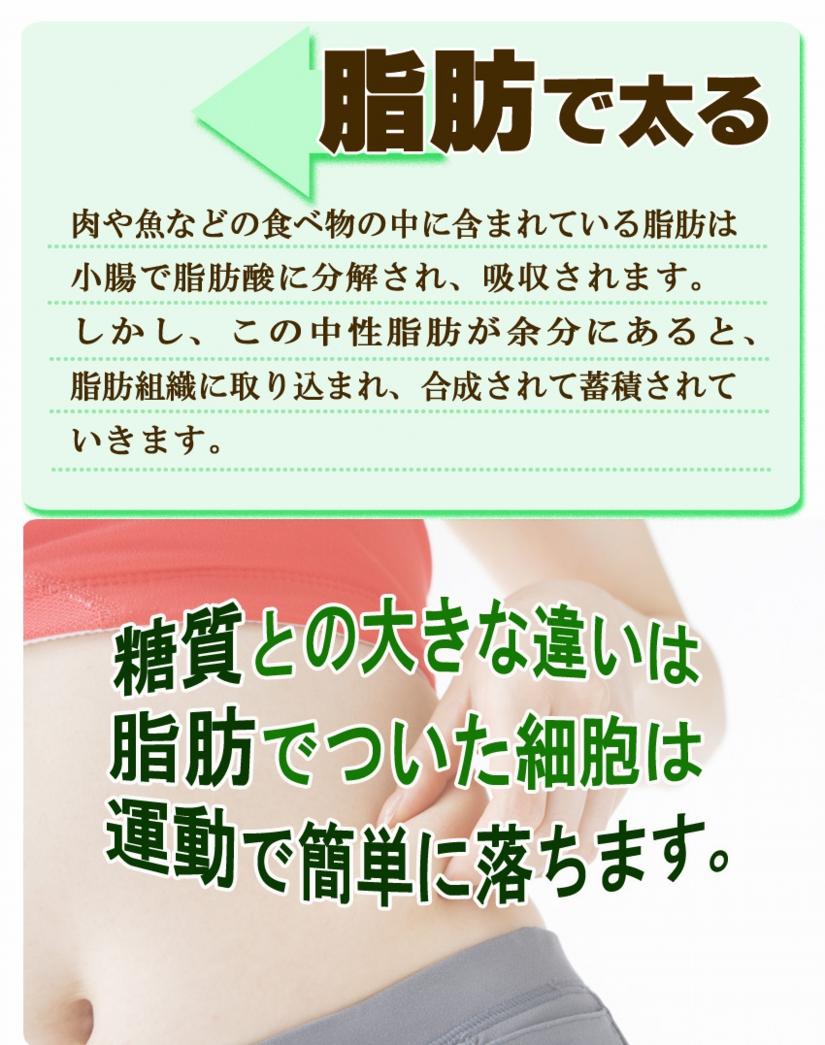 トサマル10-2.jpg