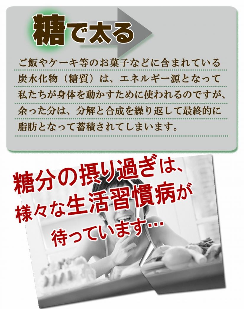 トサマル10-3.jpg