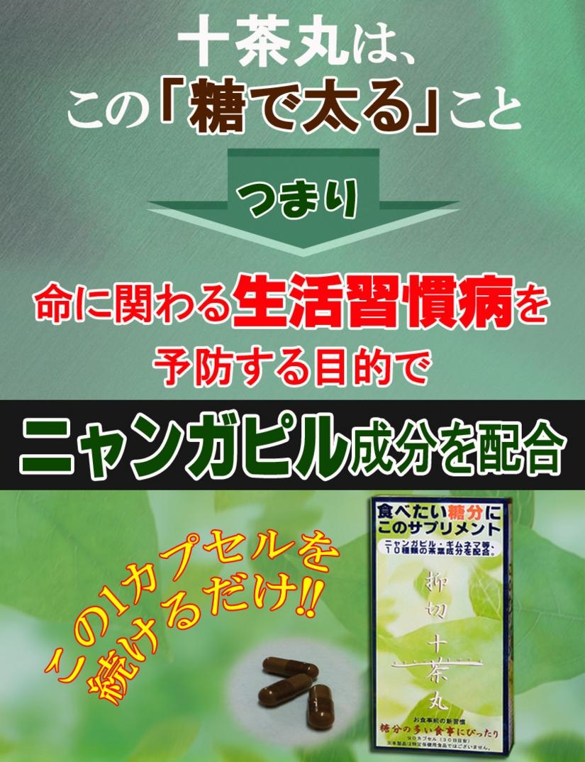 トサマル11のコピー.jpg
