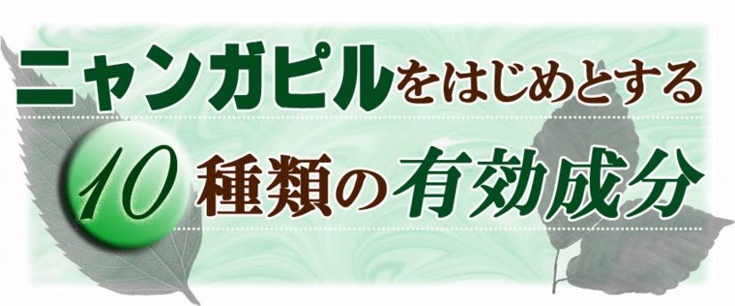 トサマル12-1.jpg