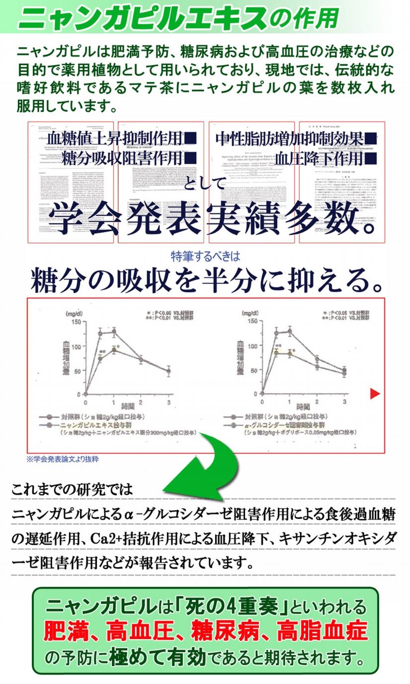 トサマル12-4.jpg