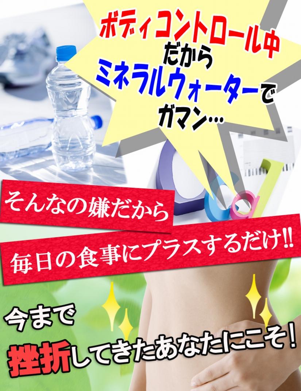 トサマル13のコピー.jpg