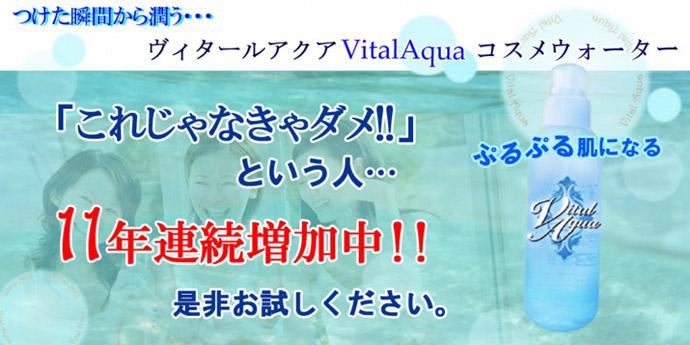 ヴィタール0-1のコピー.jpg