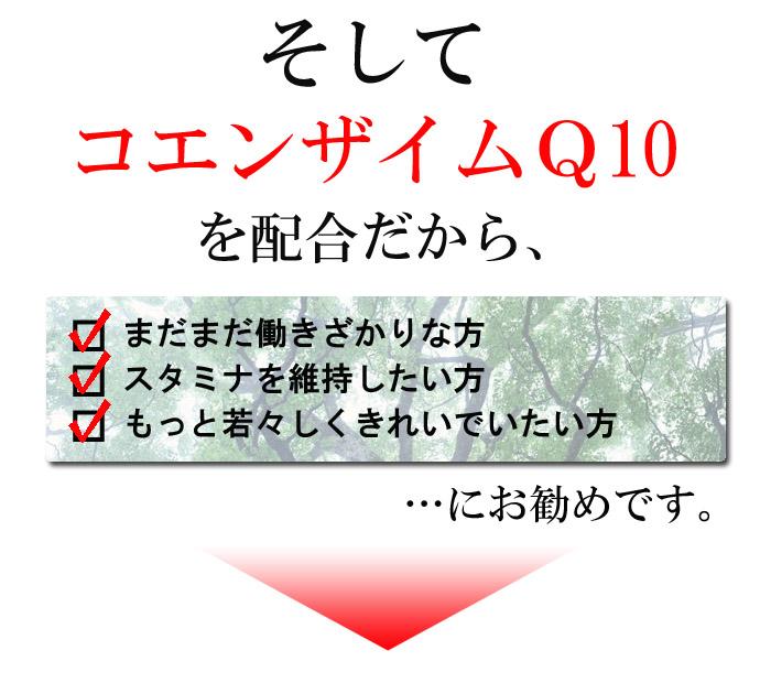 ポステミン-04-00のコピー.jpg