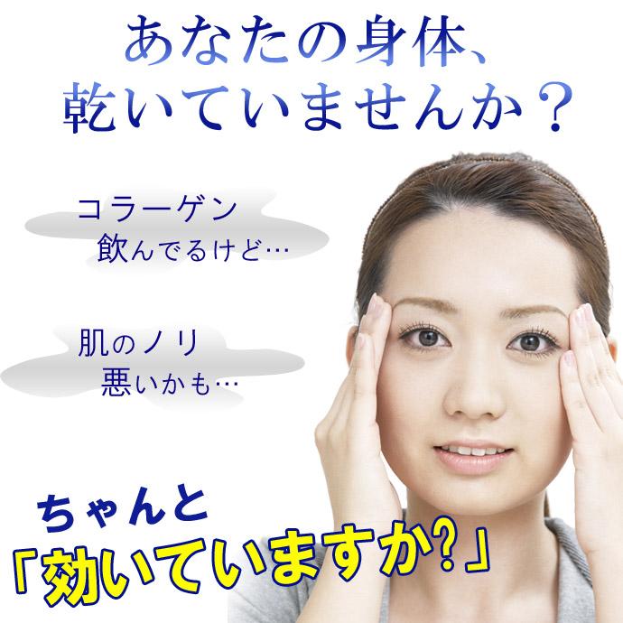 HGSI-02のコピー.jpg