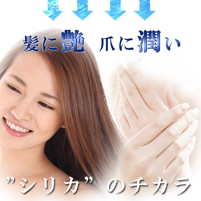 HGSi-04・のコピー.jpg