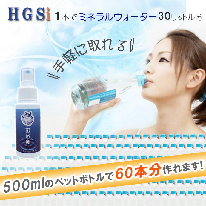 HGSi-08のコピー.jpg