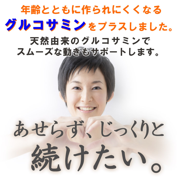 HGSi-09-2のコピー.jpg