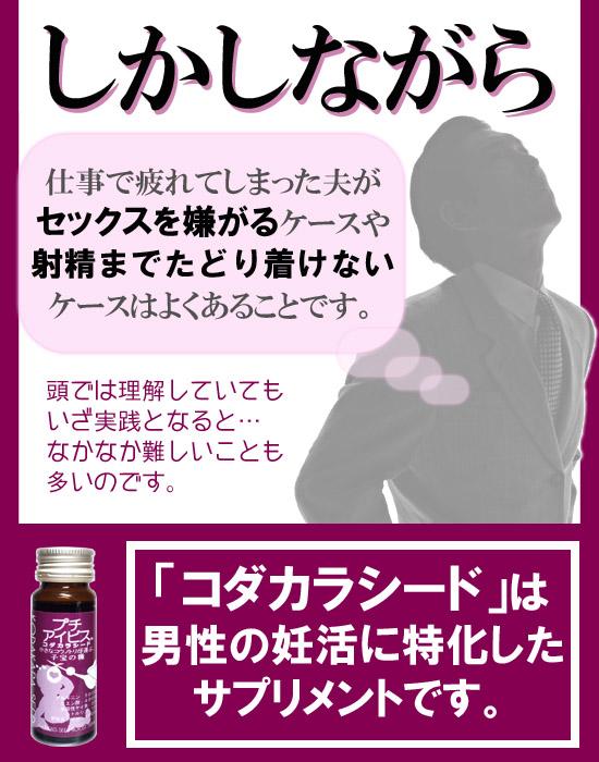コダカラシード-4のコピー.jpg