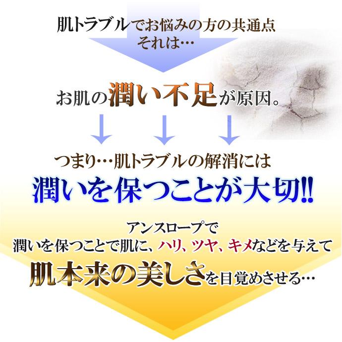 アンスロープ-2-02のコピー.jpg