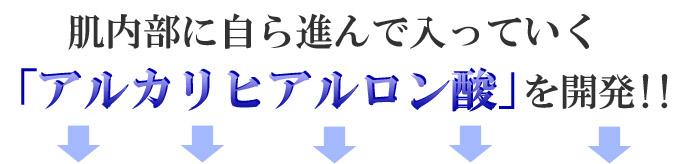 アンスロープ5-00のコピー.jpg