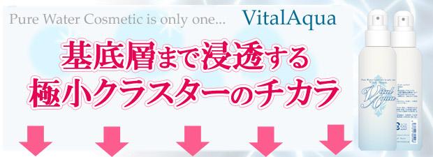 ヴィタール-極小クラスターのコピー.jpg