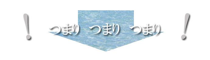 イオンソレイユ-0-5 つまりのコピー.jpg