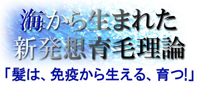 イオンソレイユ-01のコピー.jpg