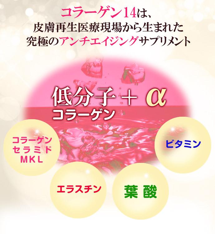 コラーゲン14-02-のコピー.jpg