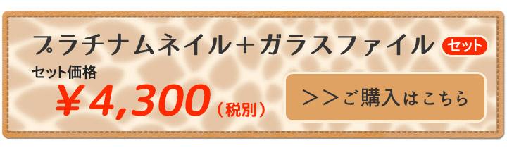 プラチナムネイル購入バナー�A+ガラスファイルのコピー.jpg