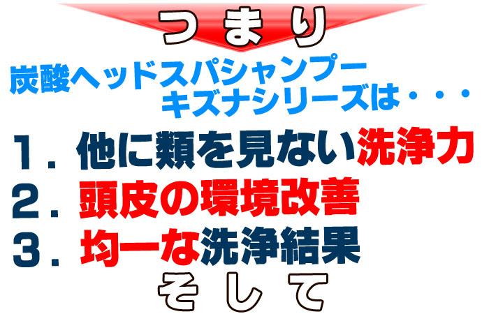 炭酸ヘッドスパシャンプーテキストまとめのコピー.jpg